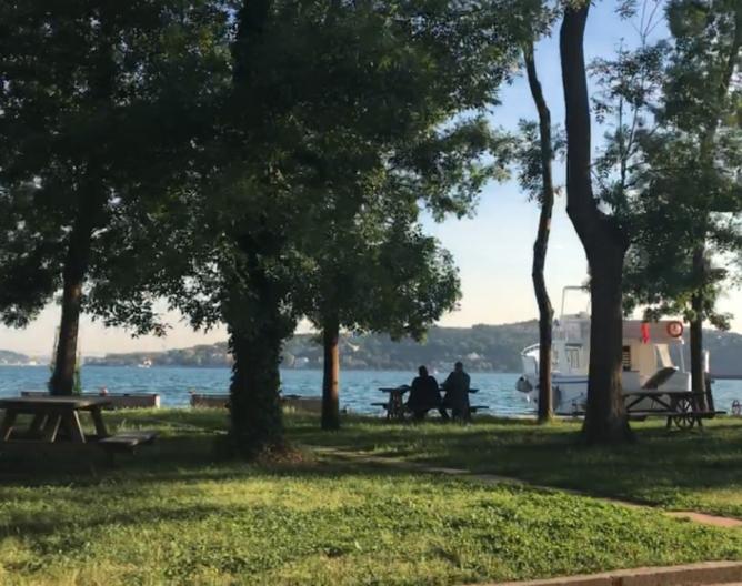 <p>Bosporus view at Kundura Sinema, Beykoz, Istanbul. photo Elif Temizkan </p>