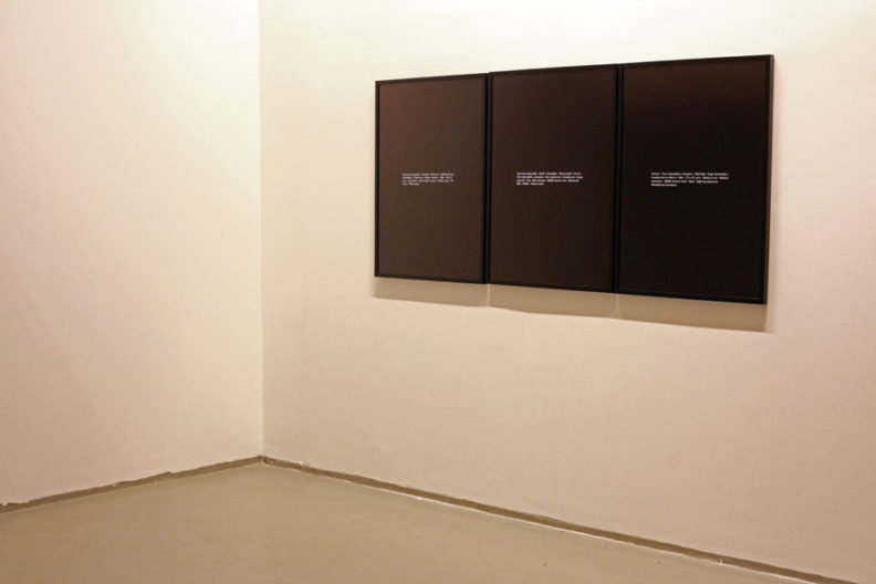 <p>Installation view, <em>Thief</em>, Protocinema, From the series